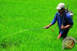 Pakar: pestisida terdaftar harus dikurangi