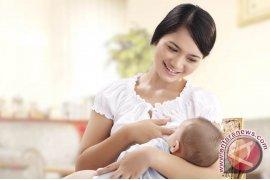 45,5 Persen Bayi Babel Belum Dapatkan ASI
