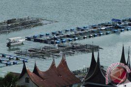 Jumlah keramba danau maninjau dikurangi jadi 6.000 unit