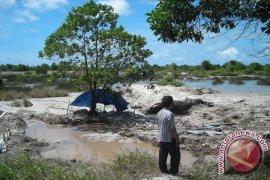 Kerusakan Hutan Gagalkan Bangka Barat Raih Adipura