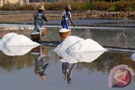 BNI pionir penyaluran KUR untuk petani garam