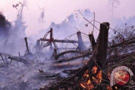 Pemadaman Kebakaran Gunung Parang Gunakan Bom Air
