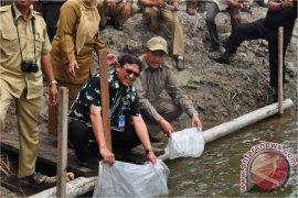 Pemerintah Targetkan 16 Juta Ton Produksi Perikanan Budidaya