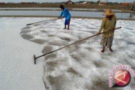 Regulasi impor garam jangan menyimpang dari UU