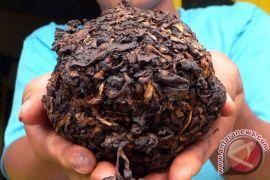 Desa wisata Temanggung diminta sediakan kopi dan tembakau lintingan