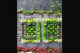 "Mewujudkan negeri florikultura dengan ""little gardenia"""