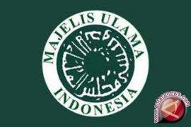 MUI: Tunda Usulkan Sertifikat Halal Pengusaha Madu