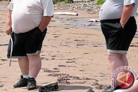 Diet Kaya Serat Bantu Kurangi Berat Badan