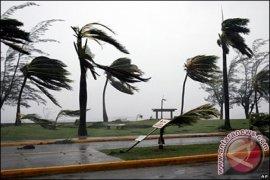 Angin Kencang Surabaya Renggut Korban, Seorang Santri Tewas Tertimpa Pohon