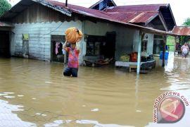 5.293 rumah di langkat terendam banjir