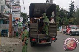 Agar Tidak Kembali Ke Jalan, Anjal Kota Bogor Dibina