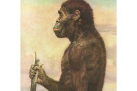 Tulang tangan tunjukkan awal manusia gunakan perkakas