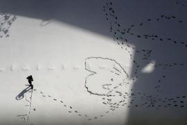 Hujan salju membuat ratusan penerbangan dibatalkan di Jerman