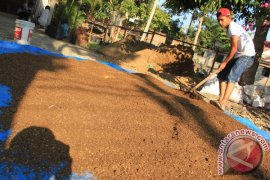 Bank Indonesia Lhokseumawe latih petani buat pupuk organik
