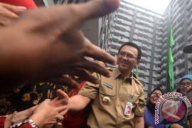 Ahok relokasi bertahap warga Luar Batang mulai pertengahan April