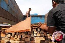 Gakkum LHK amankan kapal pengangkut kayu illegal di Raja Ampat