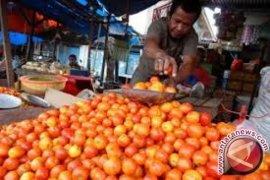 Menkonsumsi tomat dapat cegah kanker