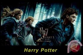 Penggemar Harry Potter Belajar Jadi Penyihir