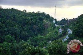 BLH Bangka Tengah Hijaukan Hutan Lindung