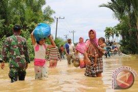 Banjir Luapan Sungai Aceh Barat Meluas