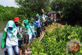 Pemkab bogor giatkan penanaman pohon antisipasi bencana alam