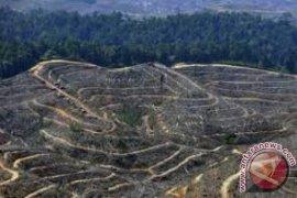 Jambi upayakan penurunan Emisi GRK 1,75 ton/tahun
