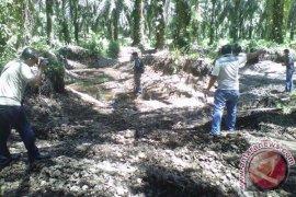 DLH koordinasikan legalitas tambang beroperasi tanpa izin di Mukomuko