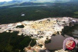 Kerusakan Hutan Indonesia Nomor Dua di Dunia