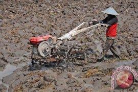 Petani Depok butuh peralatan pertanian