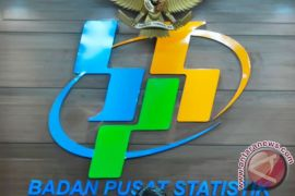 BPS: rupiah terdepresiasi 0,05 persen terhadap dolar AS