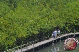 Nelayan Jember Kembangkan Ekowisata Mangrove