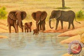 Ini Dia, Panti Asuhan Bayi Gajah