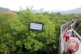 Pokmaswas Mulai Batasi Kunjungan Wisata Konservasi Mangrove