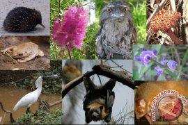 BLH: Spesies Hewan Mulai Punah