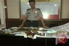 Polisi periksa saksi ahli kasus pedagangan kulit harimau