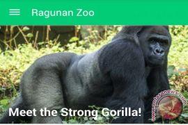 Jelajah lebih nyaman dengan aplikasi Ragunan Zoo