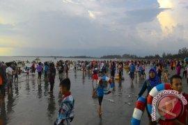 Bahaya sengatan ubur-ubur, DKP Bengkulu imbau masyarakat tak mandi pantai