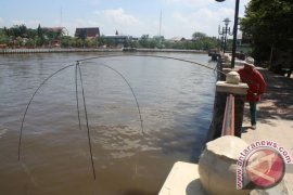 Sea Water Intrudes 60 Kilometers of South Kalimantan Mainland