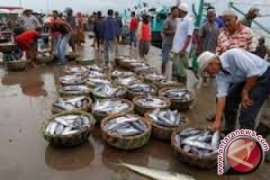 Devisa ikan Sumut 201,628 Juta dolar AS