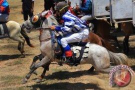 Pacuan Kuda Bonsai