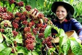 Ekonomi Lampung Melambat Akibat Ekspor Turun