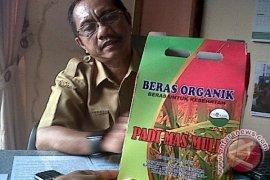 Dinas Pertanian Pertahankan Beras Organik