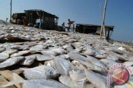 Produksi Ikan Kering Madura