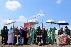 Penanaman Jagung Ketahanan Pangan Indonesia