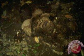 Warga temukan kerangka manusia di kebun karet