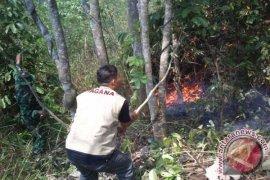 KPH Purwakarta Masih Siaga Kebakaran Kawasan Hutan