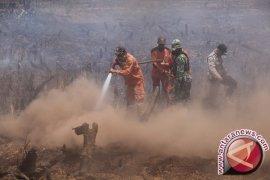 Presiden : Indonesia 2016 Fokus Pencegahan Karhutla