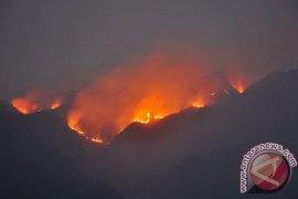 Taman Nasional Gunung Merbabu terbakar
