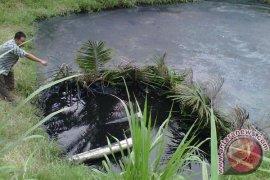 Mukomuko belum terima hasil pengujian limbah sawit PT DDP