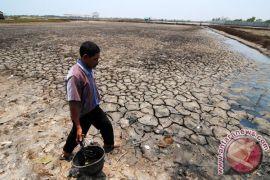 Perubahan iklim kikis mata pencaharian sektor pangan
